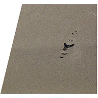 The foam-bottom mats fail in durability because they are easily ripped and shredded