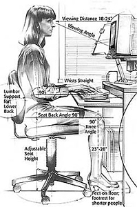 Anthropometry and sitting computer ergonomics