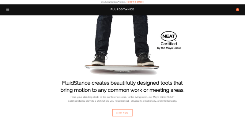 FluidStance website screenshot